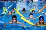 Noedels van de Pool van de Stok EPE van de Stok van de pool de Drijvende Zwemmende Drijvende