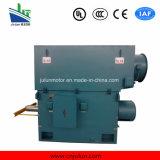 Hochspannungsrutschring 3-phasiger asynchroner Wechselstrom-elektrische Induktions-Motor
