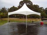 tenda foranea del baldacchino della parte superiore del picco di bianco di 6X6m