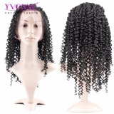 Las pelucas rizadas malasias del frente del cordón del pelo humano de la Virgen de Yvonne para el color natural de las mujeres negras liberan el envío