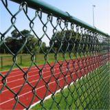 O PVC revestiu/cerca galvanizado da ligação Chain