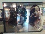Visualiza la publicidad de imágenes en la cara impresa y proporciona a la visión clara de la visión de una forma del interior