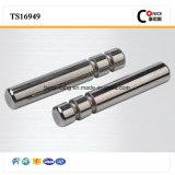Cnc-maschinell bearbeitennickel-Beschichtung-Metallscharnierstift