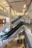 Bon prix d'escalator avec la balustrade en verre