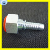 Femelle de Bsp embouts de durites hydrauliques du cône 22611 de 60 degrés