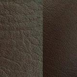 [سغس] دوليّة [غلد مدل] [ز040] جلد نجادة جلد نجادة جلد [بفك] جلد