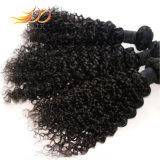 工場価格100%のベトナム人のRemyの毛のジェリーのカールの毛の拡張