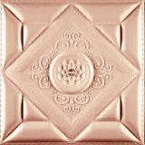 Nuovo comitato di parete di disegno 3D per la decorazione del soffitto & della parete
