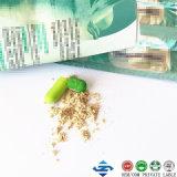 El adelgazar rápido fácil de la planta del 100% de la hierba de Daidaihua de peso de la cápsula natural de la pérdida