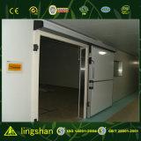 China-Kühlraum kombinierte mit dem PU-Vorstand, der für Speicherung verwendet wurde