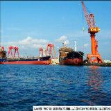 Servizio di trasporto da Xiamen/Fuzhou/Ningbo/Schang-Hai/Qingdao/Tianjin/Dalian in India/Pakistan/Medio Oriente