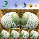 망고 Apple 아보카도 레몬 복숭아 배 키위 etc.를 위해 포장하는 과일을%s 플라스틱 EPE PE 거품 그물