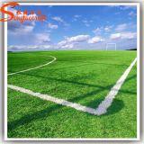 Última decoração desportivos planta artificial Erva de futebol