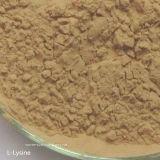 No. superior do CAS da classe da alimentação do L-Lysine 98.5% da venda: 56-87-1