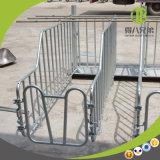 Buenos precio y paradas de la gestación del embalaje de Good Quality Customized Sow Limited