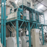 60T/D de la farine de blé de mouture de la machine de traitement pour l'Égypte