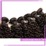 熱い販売の一等級のブラジルのねじれた巻き毛のRemyの毛の織り方