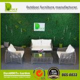 2017 Sofá caliente de la venta fijado Mobiliario de mimbre del jardín de los muebles de la rota de los muebles