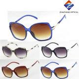 Óculos de sol coloridos da moda, óculos de venda quente