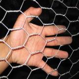 熱浸された電流を通された六角形の金網