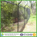 Hot DIP Galvanized 5X5cm Chainlink Fence