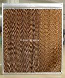 Pista de enfriamiento de la celulosa acanalada evaporativa del agua de Tuhe