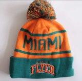 Beanie lavorato a maglia alla moda di inverno (009)