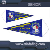 Portable Triangle Pennants / Bannerettes / String Flag