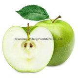 고품질을%s 가진 신선한 녹색 Apple 수출