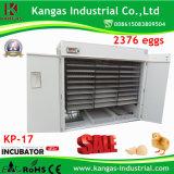 Oeuf de caille incubateurs commerciaux avec différentes capacités pour la vente