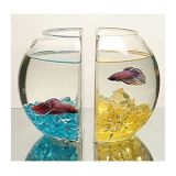 Конструкция Beatuful акриловый аквариум рыбы топливного бака
