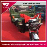 Tres ruedas triciclo eléctrico 48V de alimentación para los pasajeros y carga