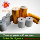 Todo el papel termal Rolls (TP-033) de la caja registradora de la talla
