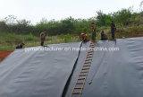 Qualidade superior geomembrana de HDPE utilizada no viveiro de peixes Pond a Camisa