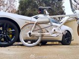 이온 지능적인 Pedelec E 자전거 20 ' 인치 36V 250W