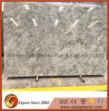 인도 벽 타일 바닥 도와를 위한 밝은 초록색 화강암 석판