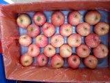 シンガポールのための新しい等級1のサイズ100/113/125赤いペーパー富士Apple