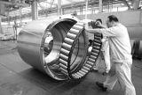 Roulement à rouleaux cylindriques 300Ru92 pour les Rock Machine Grab Loader