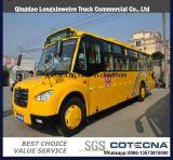 19-22 시트 버스를 가진 중국 질 학교 버스
