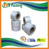 Plastic Strook van de Riem van 100% de Maagdelijke Materiële pp voor Machine