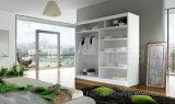 De Kast van de Garderobe van de Schuifdeur van de Spiegel van het Meubilair van de slaapkamer (HF-EY0812)