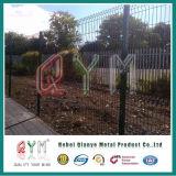 Тип покрынный зеленым порошком сваренной сетки Fence/3D загородка сетки