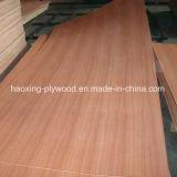1220*2440mm de grado de muebles de madera contrachapada de Sapele en venta