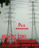 Megatro 220kv 2_2gt1-Ssz2 multi Kreisläuf Doppel-Leiter Tangente-Aufsatz