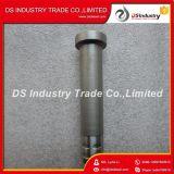 De Assemblage Barrel&Plunger 3079944 van de Injecteur van de Dieselmotor van Cummins