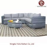 Rattan grigio Sofa Set per Outdoor (1503)