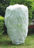 Polypropylen-landwirtschaftliches Pflanzendeckel-nicht gesponnenes Gewebe