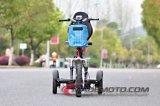 2016 Nouveau Zappy Ce Scooter 500W