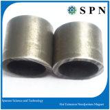 Magnete di NdFeB con il processo caldo di Presse/magnete permanente di NdFeB