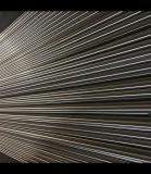 Esportazione 304 ss Rod della fabbrica della Cina